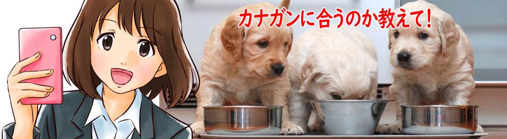 カナガンのお試しはどんな犬種やサイズに合うの?